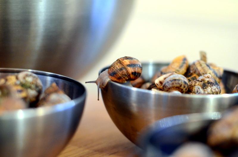 ślimaki lerozbratbistro